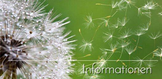 Psychotherapie Aachen - Informationen